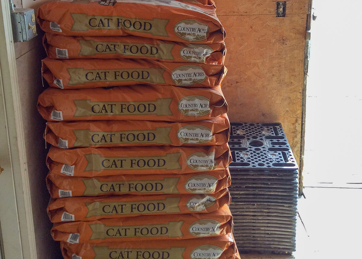Cat food - Country Acres at Faulkton Grain and Feed store